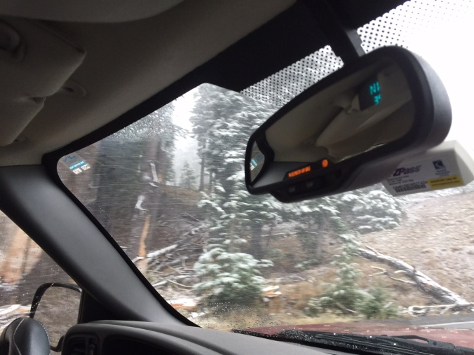 Snow on our way out of Crater Lake the next day. ZERO visibility.